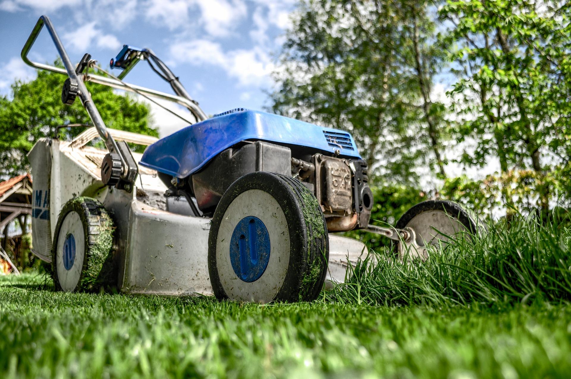 Rasenmähen, ein wichtiger Bestandteil der Gartenarbeit im Frühjahr